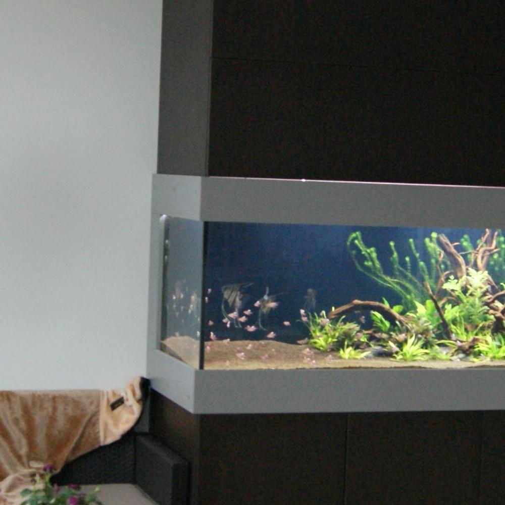 Akwarium w salonie